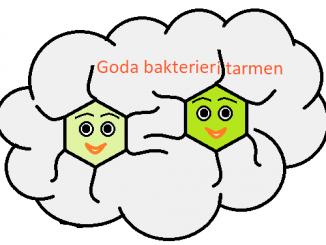 Goda bakterier i tarmen